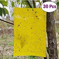 30 Piezas Trampas de Insectos de Doble Cara