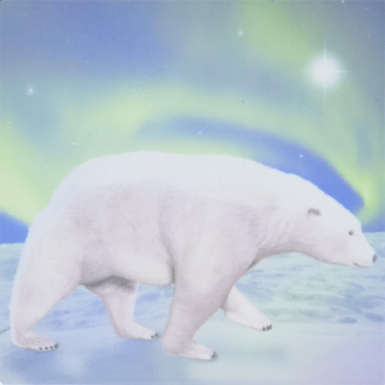 4-Inch 3dRose ct/_20903/_5 Polar Bear Aurora Glass Tile