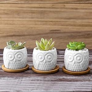 MyGift Mini Owl Ceramic Flower Pot with Bamboo Tray, Set of 3