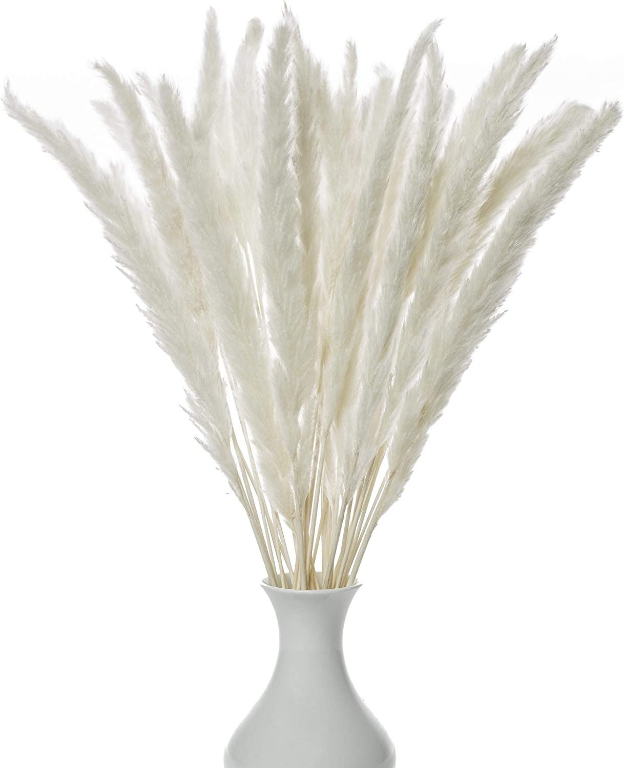 Decor Dance Natural Dried Pampas Grass, 30 Pcs (17 inch Stems) Boho Floral Decorative Flower Arrangement Home Decor for Living Room Kitchen or Office, Long, Soft and Fluffy Stalks, Rustic White