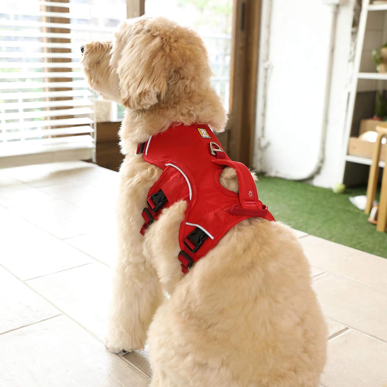 XS,S.M.Lの4サイズ展開で中小型犬から超大型犬まで幅広い犬種をカバー。(カラーはブラック1色となります)