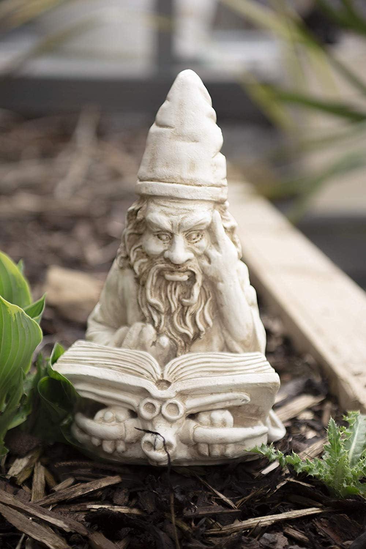 garden mile® - Esculturas de jardín con Efecto de Piedra Blanca, Adornos de Resina | Estatuas de jardín y decoración de gnomos, Reading Wizard: Amazon.es: Jardín