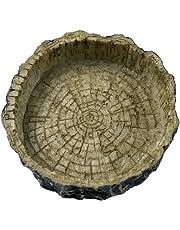 terrarium bowls amazon com