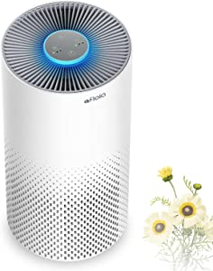 Air Purifier for Home Smokers 99.99% Effective, 22db |True H13 HEPA Medical Grade Filter Air Cleaner Removing Allergies, Odor Dust and Pollen for Bedroom And Office, With 7 Color Night Light