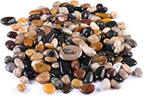 "ROCKIMPACT 5.5 lbs. Succulent Rocks Pebbles for Planters, Kids Crafts, Aquarium Gravel, Terrarium Rocks, Landscaping Garden Decorative Rocks, 1/2"" to 3/4"""