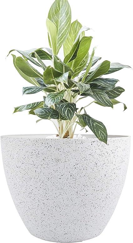 Speckled Planter