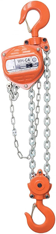 William Hackett C4 Hand Chain Hoist, 1.0 Tons, 12 m Height of Lift AMZ1023815