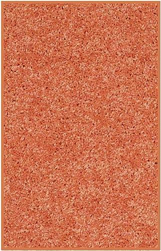 Koeckritz 2 x3 Area Rug. Bright Fire Orange Carpet.