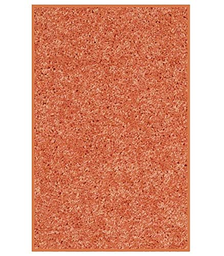 Koeckritz 3 x5 Area Rug. Bright Fire Orange Carpet.