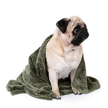 Splink Mascota para perros cama suave forro polar cálido Toalla Cojín Manta para perro/gato Animales(70 x 100 cm, verde): Amazon.es: Productos para mascotas