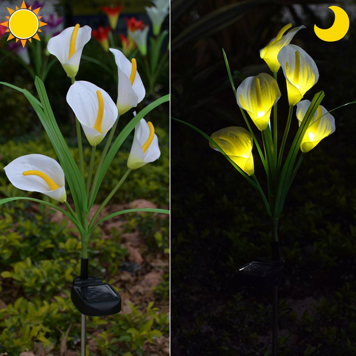 Chasgo Solar Decorative Garden Stake Light Outdoor, Led Lighting Calla Lily Flower Solar Graden Light Outdoor Stake, White Cally Lily Flower