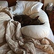 Amazon Com Leachco Back N Belly Contoured Body Pillow