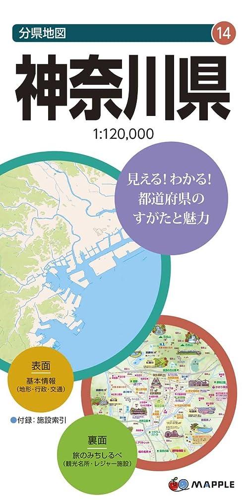 キャラバン架空の滑りやすい東京の巨大地下網 101の謎