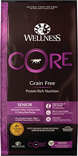 Wellness Core Natural Grain Free Dry Dog Food Senior