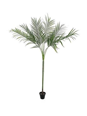 Amazonde Artplants Künstliche Areca Palme Deluxe Getopft 180 Cm