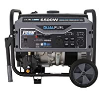 Deals on Pulsar G65BN Portable Gas/LPG Dual Fuel Generator