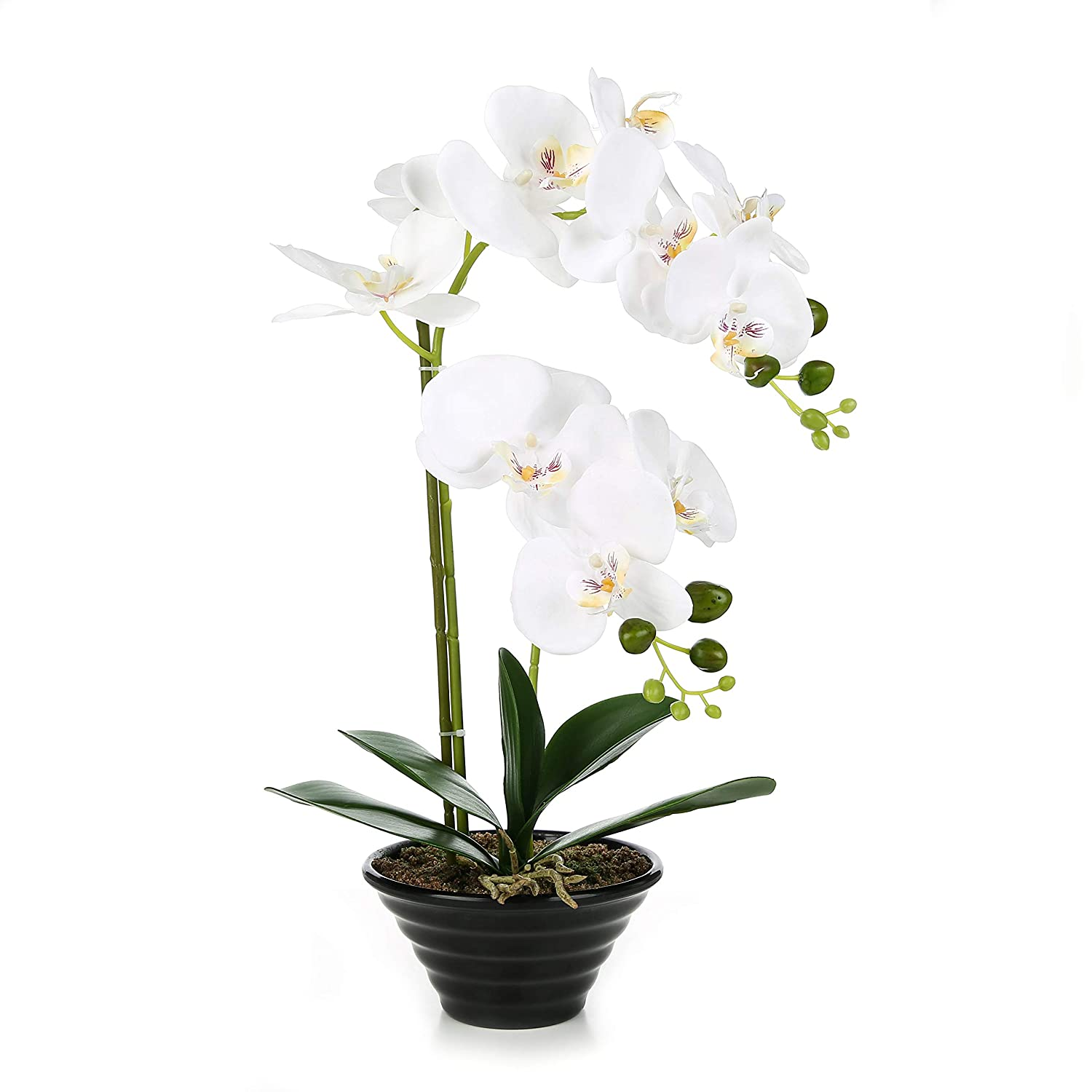 Amazoncom Jtmall Artificial Silk Flowers With Vase White Orchid