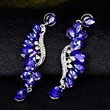 Sinfu Women's Vintage Luxury Crystal Long Tassel