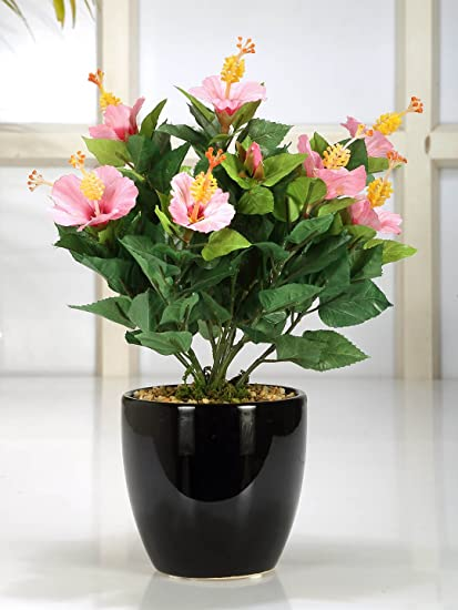 Buy Fourwalls 31 Cm Tall Artificial Hibiscus Flowers Fixed In A