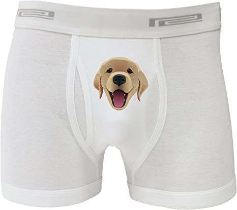 NDS Wear TooLoud Cute Yellow Labrador Retriever Dog Mens Boxer Brief Underwear
