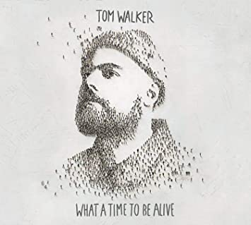 Image result for what a time to be alive tom walker