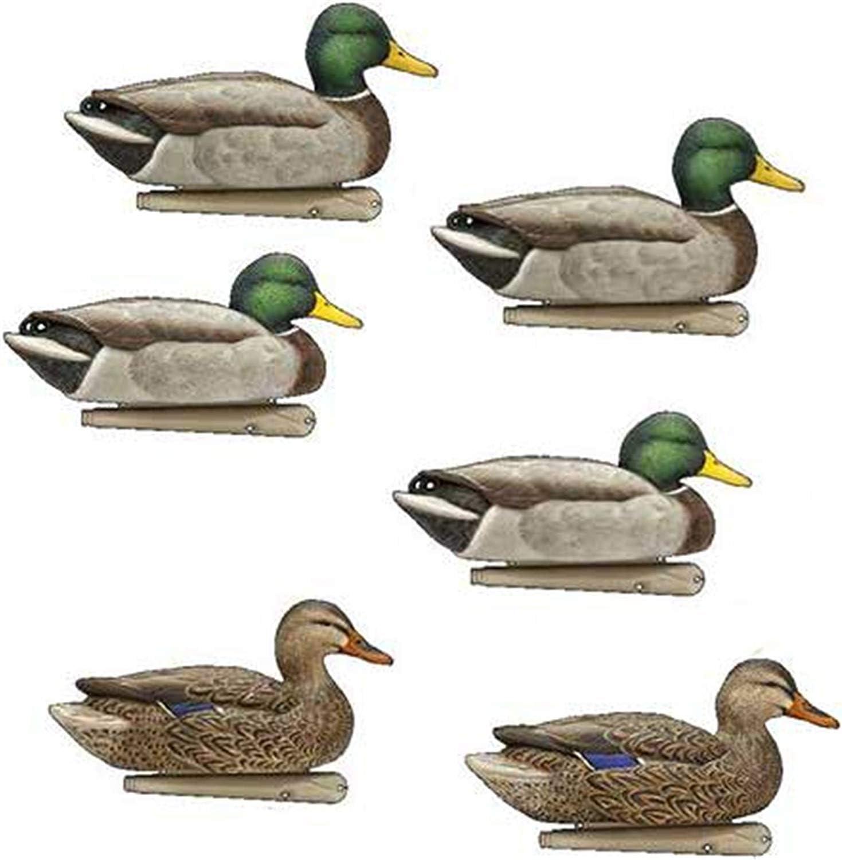 Avian X Top Flight Duck Decoy Back Water Mallard 6 Pack