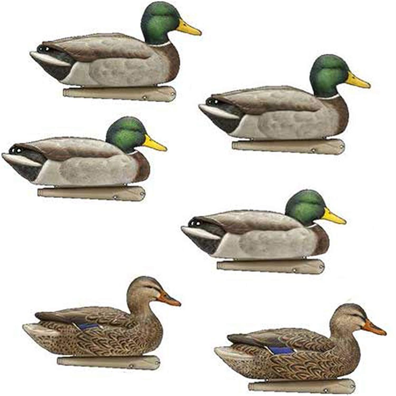 AvianX Top Flight Duck Open Water Mallard Decoy (6 Pack), Green (3-Units)