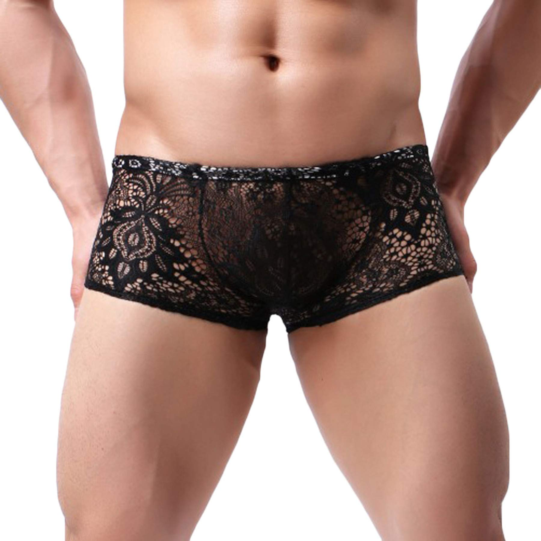 Lace Sexy See Through Boxer Briefs Sissy Pouch Panties Trunks Underwear Underpants Knickers for Mens (Black, L)