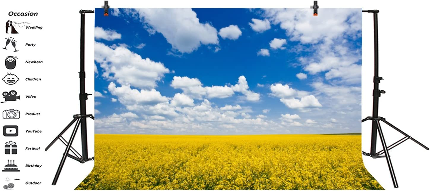 Leyiyi 10x8ft Photography Background Rape Flower Blossom Backdrop Wedding Party Sunny Spring Sky Cloud Rapeseed Canola Field Agriculture Happy Birthday Baby Shower Photo Portrait Vinyl Studio Video