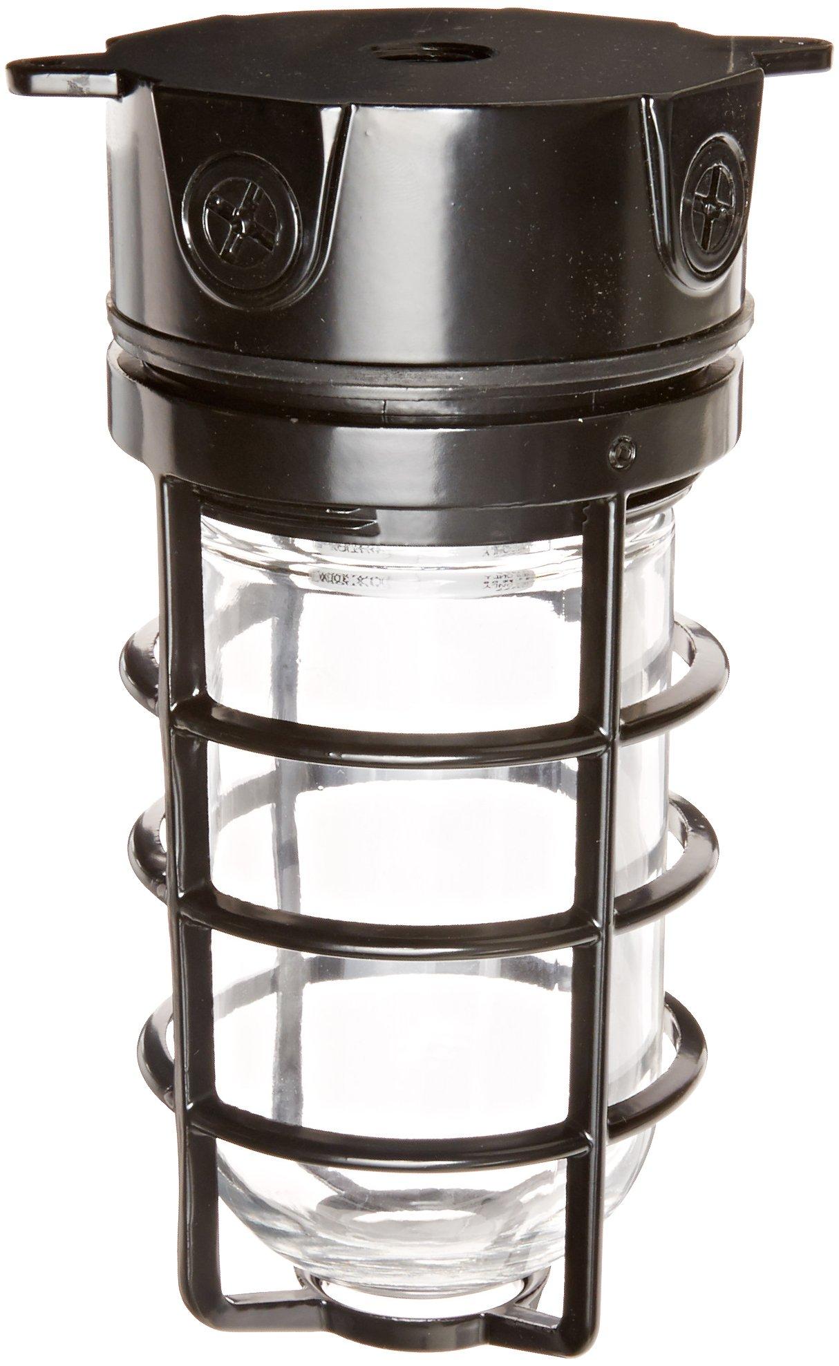 RAB Lighting VX100DGB Vaporproof VX 4'' Ceiling Box Mount with Glass Globe and Cast Guard, A19 Type, Aluminum, 150W Power, 1/2'' Hub, Black