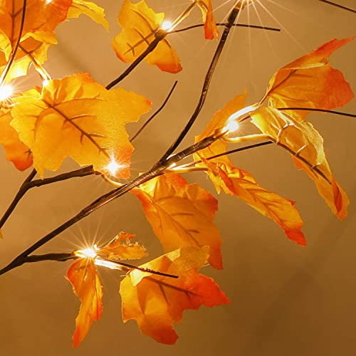 2-Pack Thanksgiving Decorations Table Lights, Thanksgiving Maple Leaves Autumn Tree Decoration 24 24 LED, Thanksgiving Gift, Battery Powered Fall Decor for Home Indoor Fall Decorations