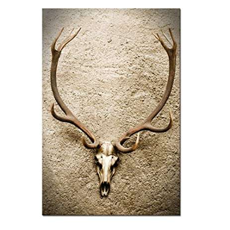 Animal Skull Canvas Wall Art Prints,Deer Antler Picture 3D Wall  Decal,Modern Art