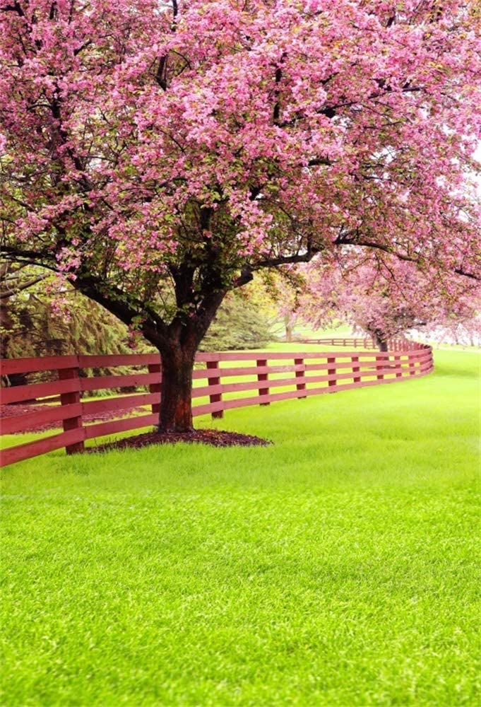 YongFoto 6.5x6.5ft Pink Flower Trees Backdrop Green Grass Lawn Sunshine Photography Background Spring Cherry Blossom Wedding Bridal Shower Party Banner Interior Decor Kids Adult Portrait Studio Props