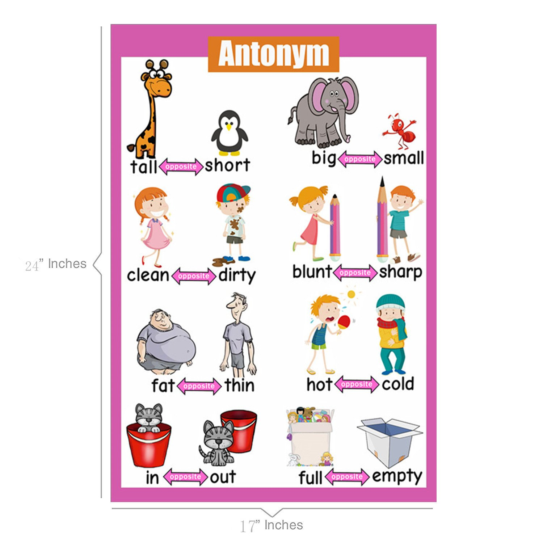 SANTSUN Educational Preschool Posters   Educational Wall Charts   school  decorations classroom organization for Kindergarten-42x60cm(17x24 inch)–