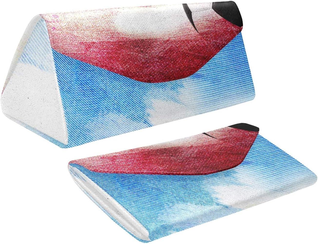 Estuche de anteojos para hombre plegable Bandera de Francia con balón de fútbol Estuche de transporte de vidrio de triángulo abstracto Pu Cuero con cierre de imán Gafas de sol titular para