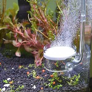 Yagote - Difusor de CO2 de vidrio con tubo de conexión en forma de U para tanque de plantas de acuario de polen (difusor de CO2 grande, fondo plano)