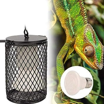 XXDYF Lámpara de Calor de Reptil, Lámpara de Calefacción ...