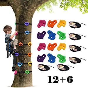 Ancaixin Tree Climber for Kids with 12 Rock Climbing Holds and 6 Ratchets | Ninja Warrior Obstacle Course Training Equipment for Outdoor Play | Gymnastics Kit for Boys and Girls Age 5+