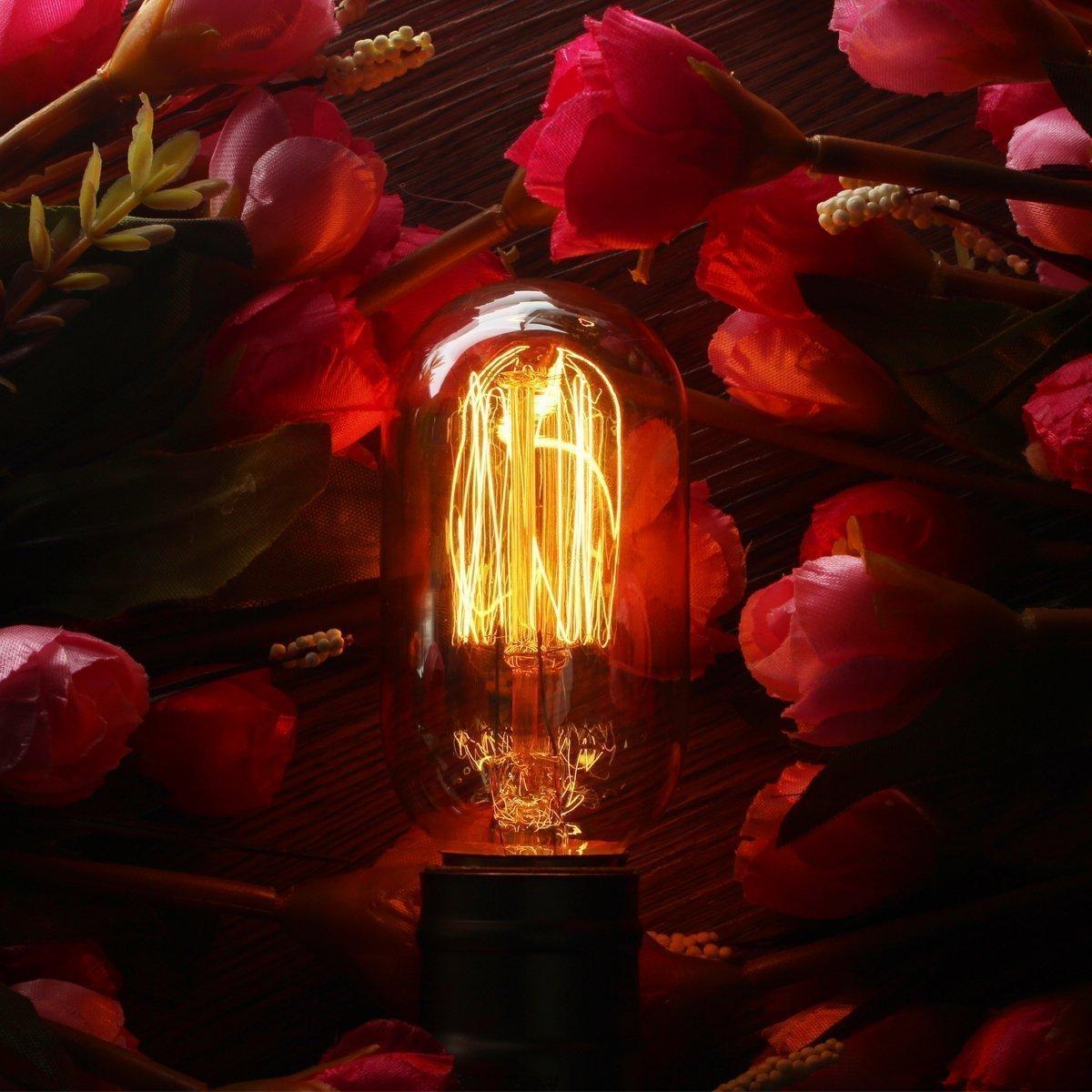 KINGSO E27 Edison Ampoule /à Incandescence Vintage Lampe Filament R/étro T45 60W 220V Blanc Chaud Id/éal pour D/écoration Luminaire Antique
