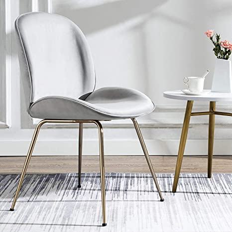 Art Leon Velvet Chair Soft Upholstered Modern Shell Beetle Leisure Chair with Gold Legs for Living Dining Room Bedroom Dresser (Silver Grey)