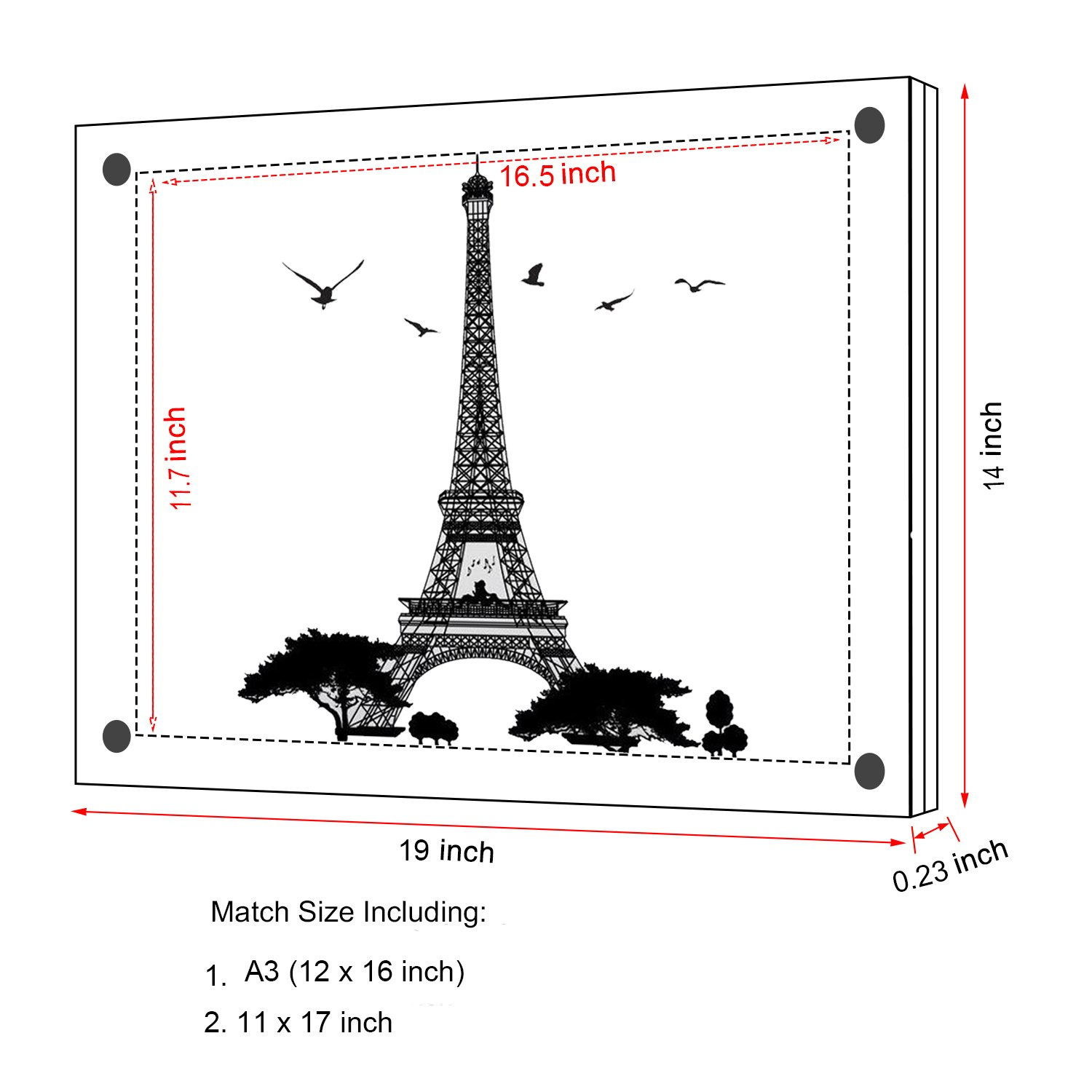 12x17\'\' Acrylic Wall Mount Picture Frames, A3 Size Clear Photo Frame ...