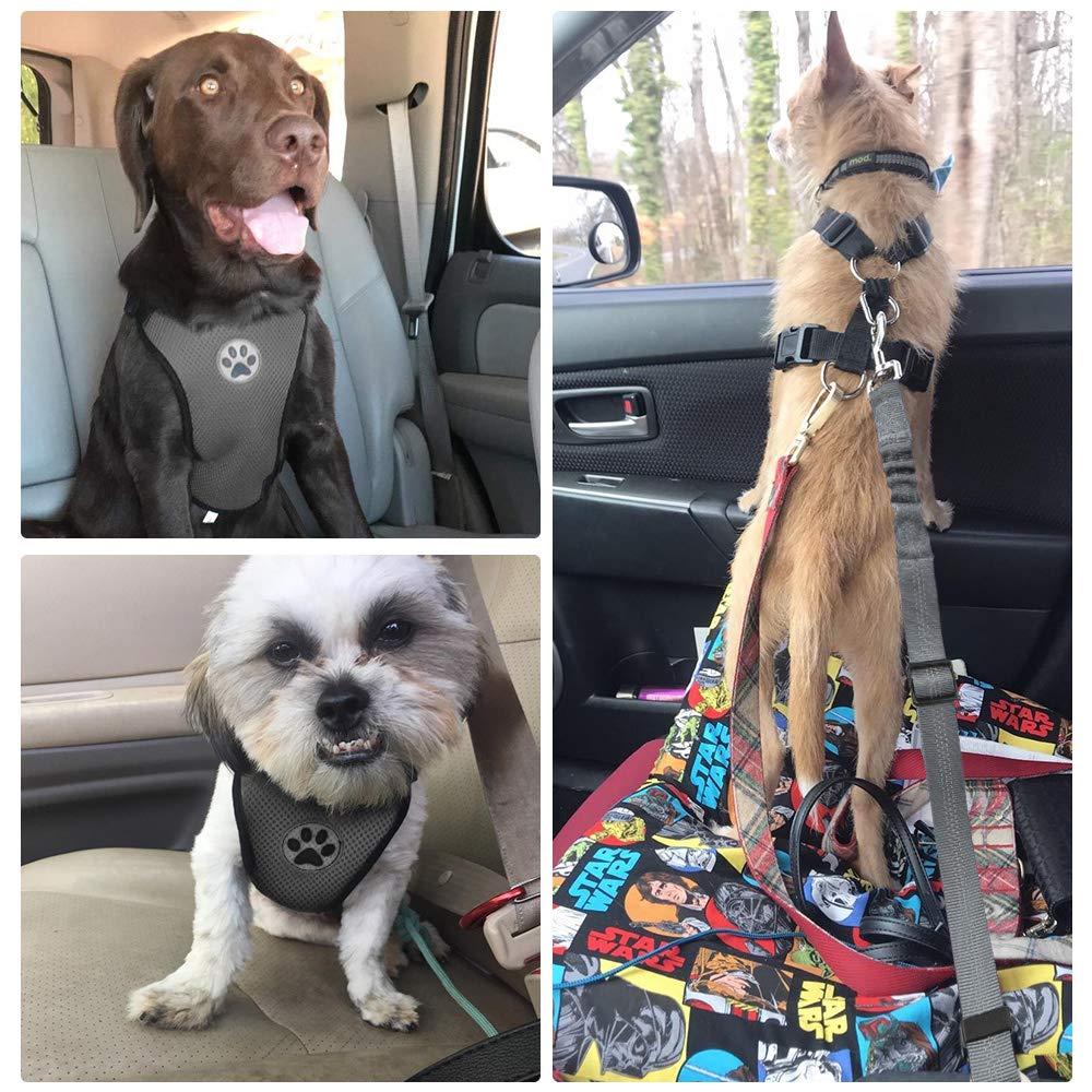 SlowTon Arn/és de Coche para Perros con cintur/ón de Seguridad arnes Perro,Correa el/ástica Ajustable y Forro de Tela Transpirable en el veh/ículo Arn/és de Seguridad para Perro