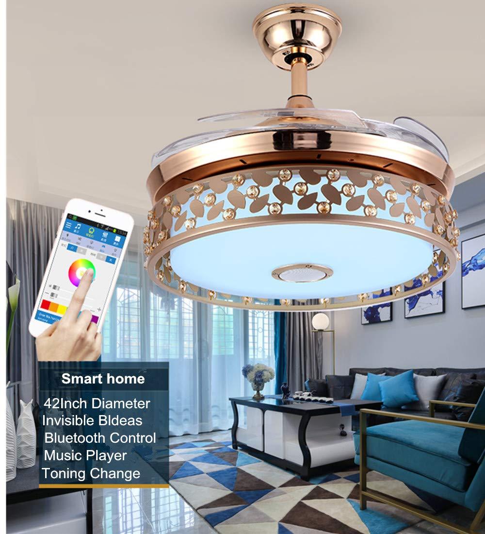 Amazon.com: Fandian Ventiladores de techo modernos de 42 ...