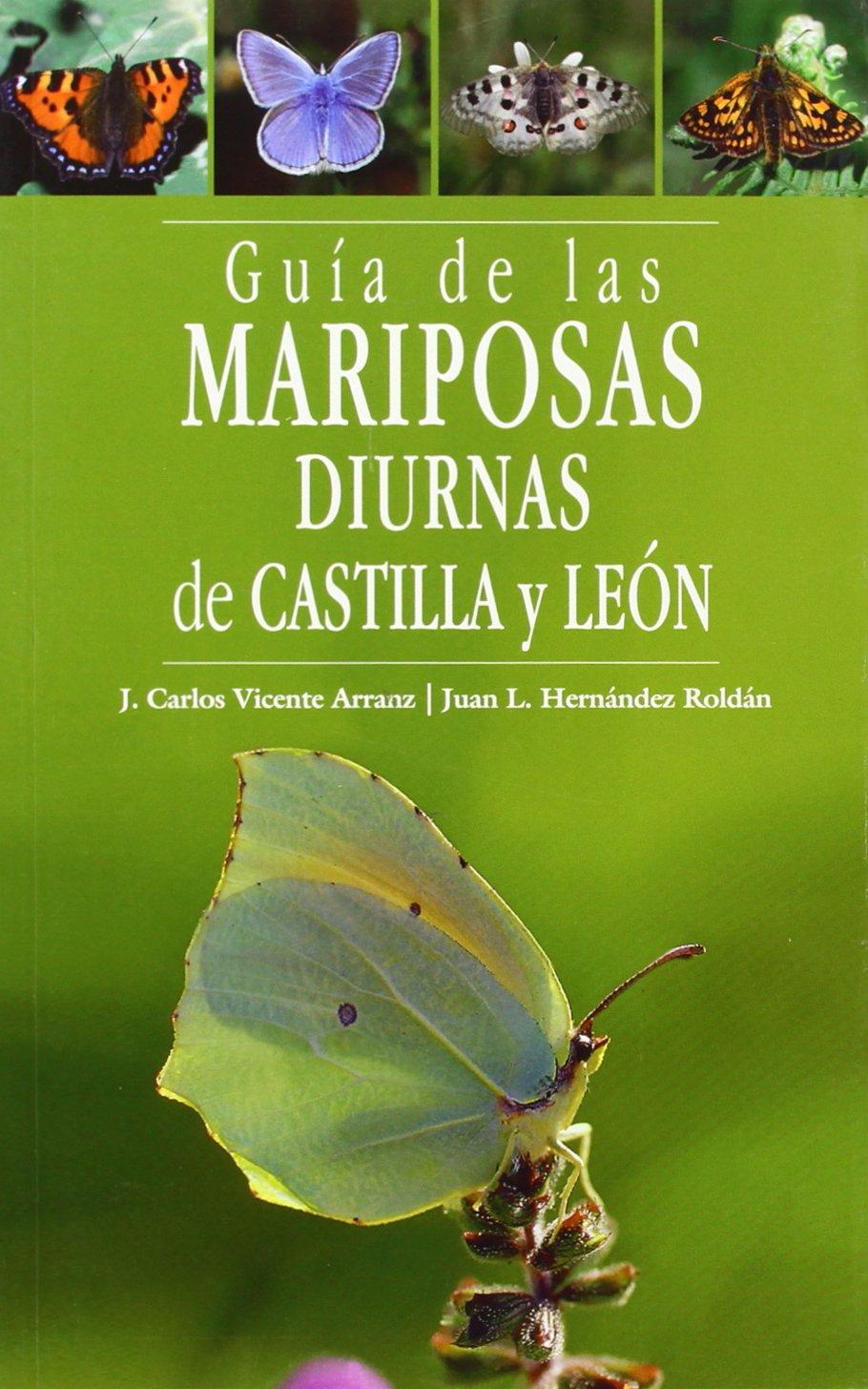 GUIA DE LAS MARIPOSAS DIURNAS DE CASTILLA Y LEON: Amazon.es ...