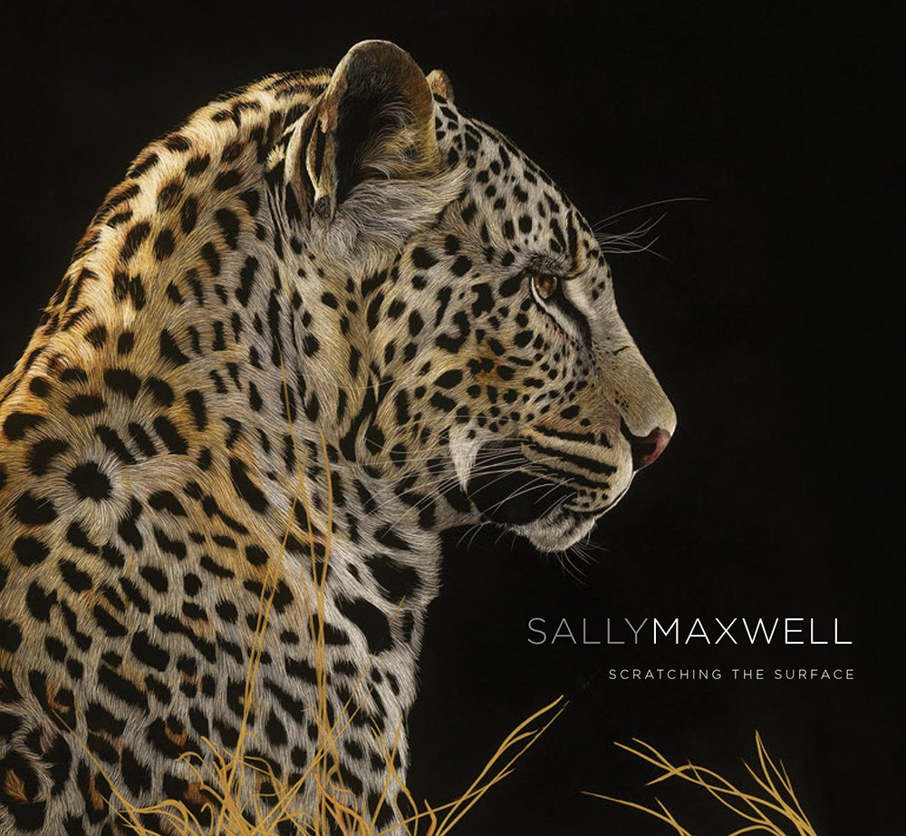 sally maxwell scratching the surface by todd wilkinson 2016 05 15