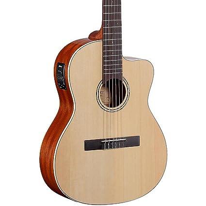 Amazon.com: Alvarez Guitarra Clásica – Carcasa híbrida ...