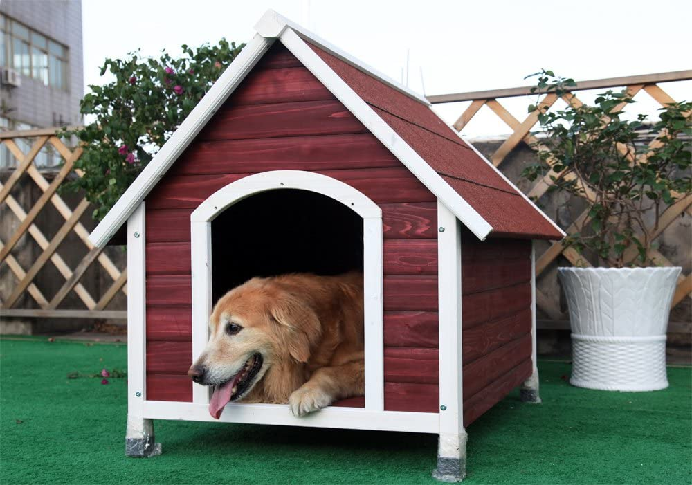 Petsfit Outdoor Wooden Dog Pet House, Painted with Water Based Paint