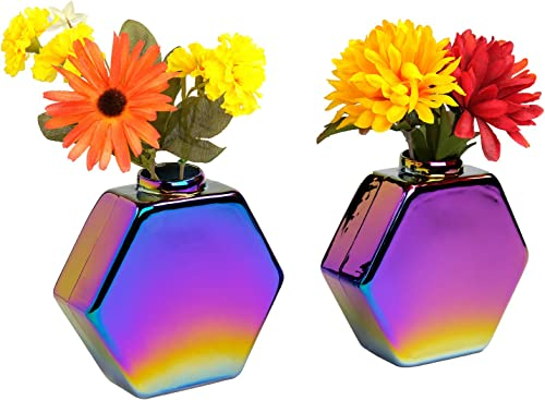 Excello Global Products Glass Rainbow Flower Holder Vase Unique and Colorful Wall Mountable Vase for Flower Decoration 5 x 5.25 – Pack of 2