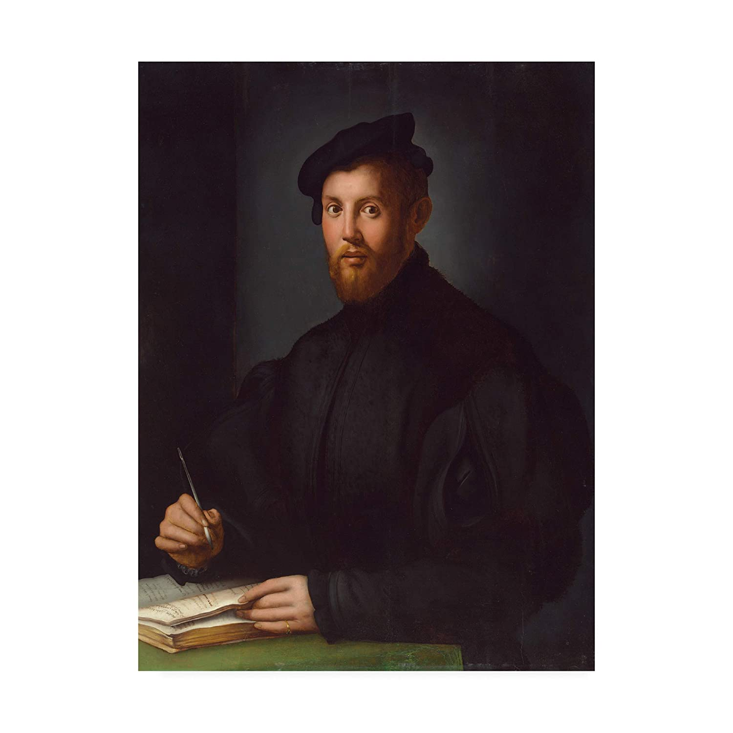 14x19 Trademark Fine Art Portrait of a Young Man with a Book by Agnolo Bronzino, 14x19