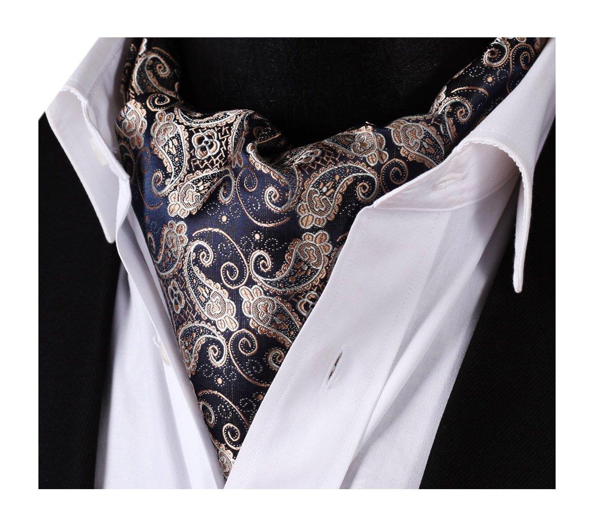 HISDERN Men's Paisley Floral Ascot Tie Jacquard Woven Silk Cravat RF407V-D